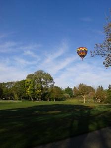 Hot air balloon over village green