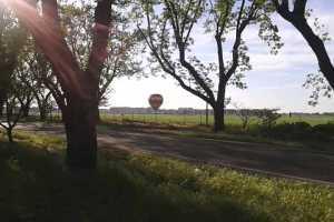 Balloon landing in field
